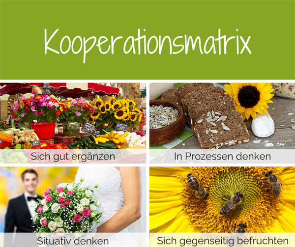 kooperationsmatrix